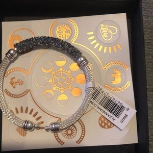 Alex and ani starlight fine rocks mesh cuff